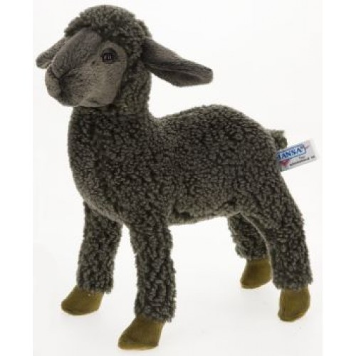 Kid Sheep 3454 (1)