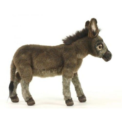 3805-donkey-medium-500×500