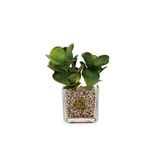 Glass Potted Faux Echevaria – Jade